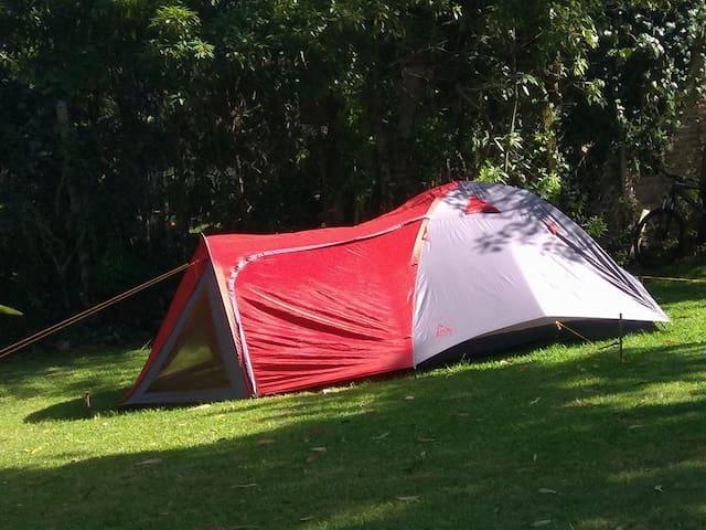 Punta del Este también de Camping