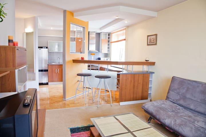 Modern apartment in Zaliakalnis  - Kaunas - Apartment