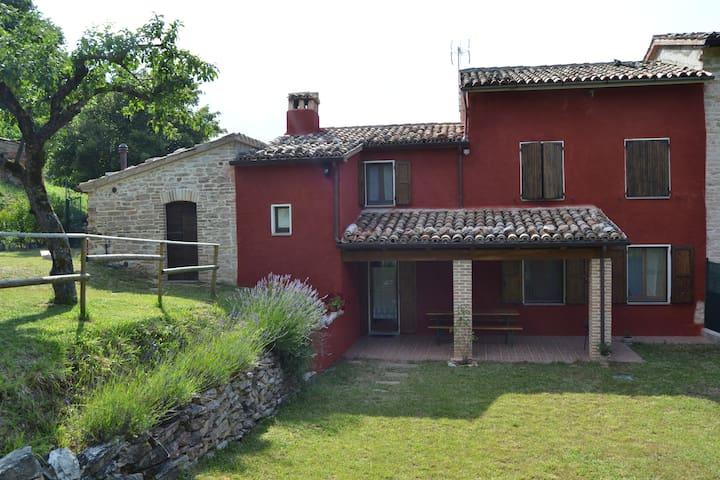 Rustico sul Monte Catria - Frontone - Apartment