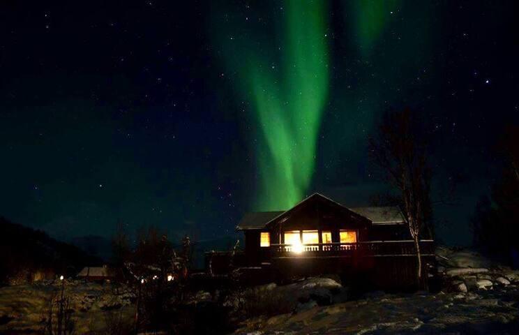 Lyngen, Elvejord