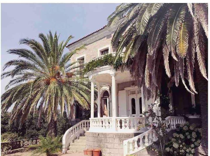 AMAZING HOUSE CORSICA