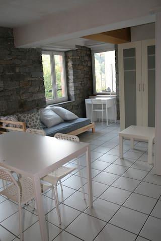 Monolocale a Bellinzona, quartiere di Gorduno