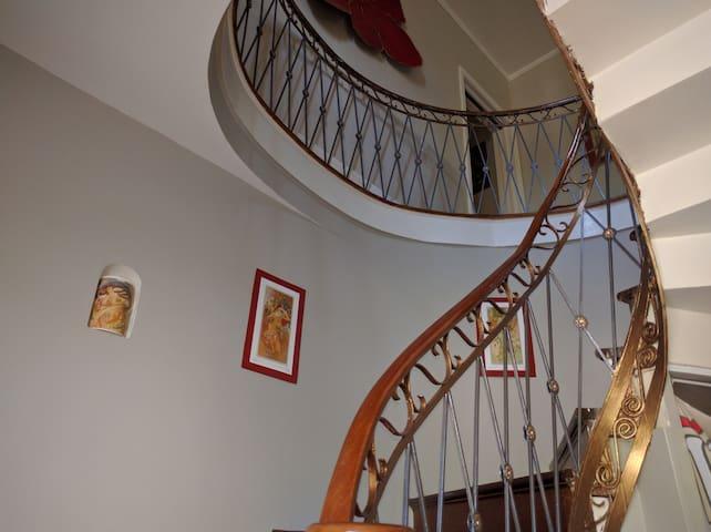 Winding mahogany stairs