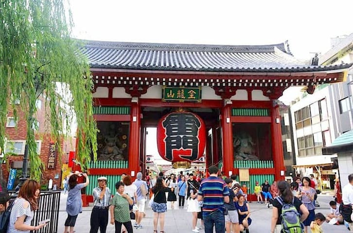 Must See Sights in Tokyo You Should Visit