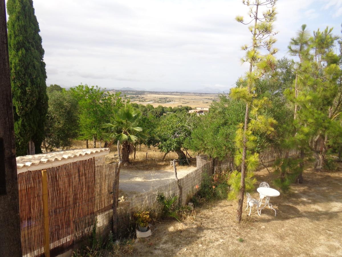 Santa Margalida 2018 (com Fotos): O Principais 20 Lugares Para Ficar Em  Santa Margalida   Aluguéis Por Temporada, Acomodações Por Temporada    Airbnb Santa ...