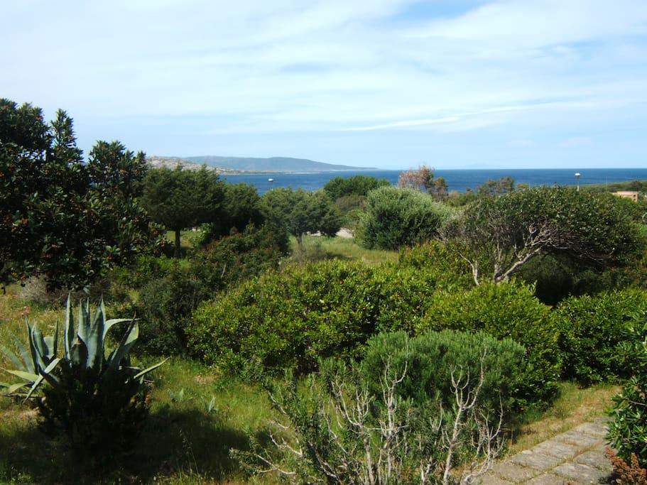Vista da casa sull'isola dell'Asinara