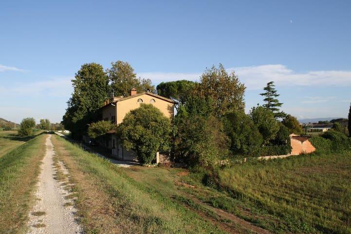 vita semplice - Cascina - House