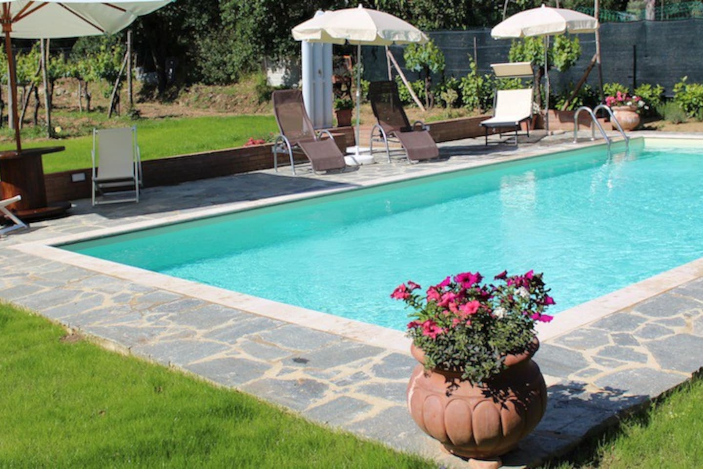 Lovely pool with barbecue