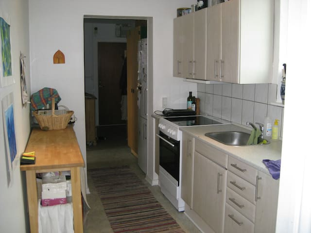 Nice large room center of Roskilde - Roskilde County - Apartment