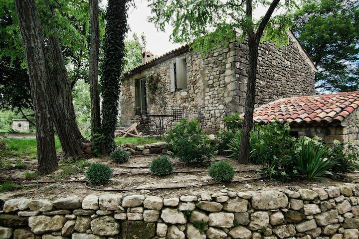 Domaine Saint-Maurin - le Tilleul, gite 2P - Villemus - Nature lodge