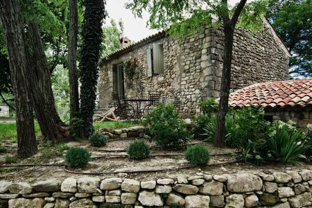 Domaine Saint-Maurin - le Tilleul, gite 2P - Villemus - Přírodní / eko chata