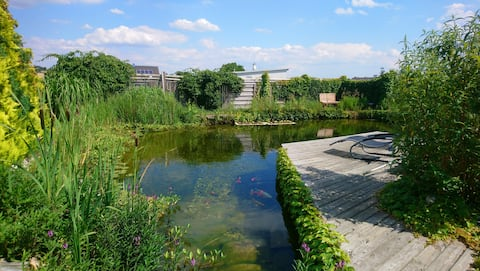 Pavillon mit Blick auf Schwimmteich