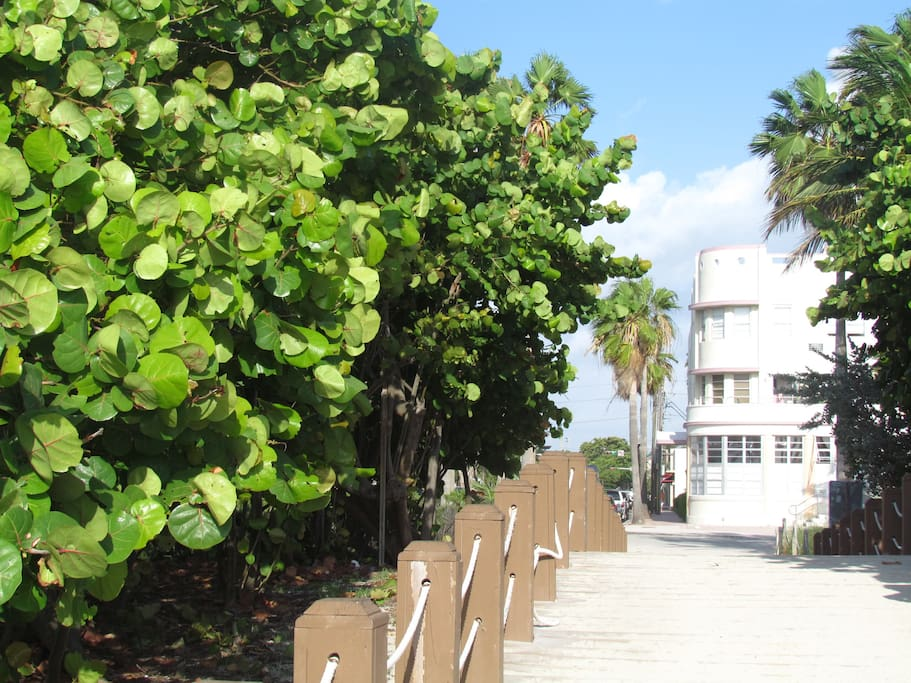 Dream Studio by the Sea, a few steps to the beach in Art Deco Building