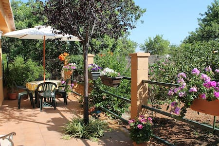 Mooi en gezellig vakantie huisje te huur in Mallorca - Palma de Maiorca - Casa