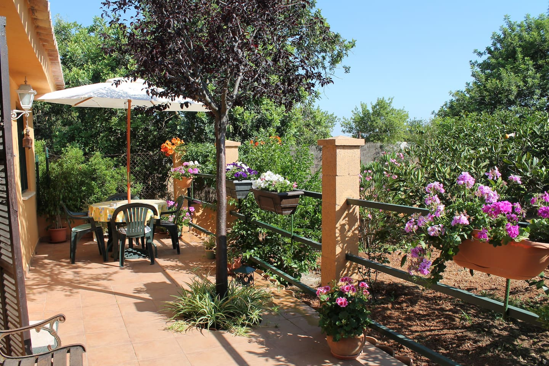 Preciosa terraza con vista al hermoso jardín que rodea la casita