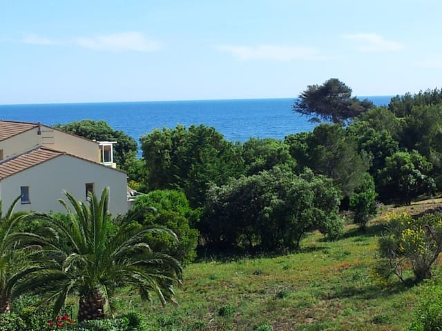 Studio Provence sea view, swimming  - Sausset-les-Pins - Apartment
