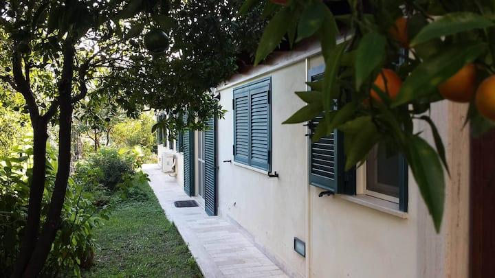 Villa François