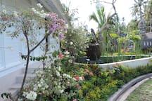 Jardin à l'arrière.....et ...petit coin d'eau....