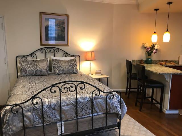Elegant Dupont Suite across from Washington Hilton
