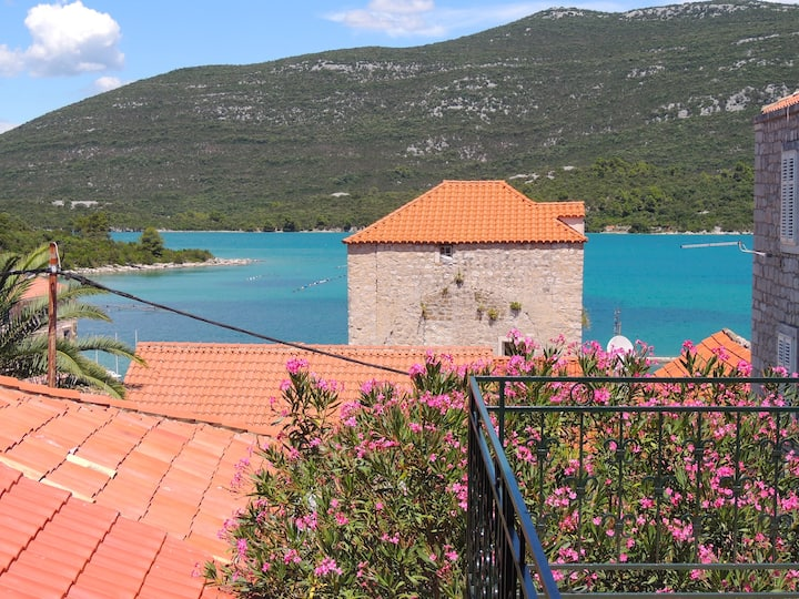 Alize - appartement terrasse bord de mer