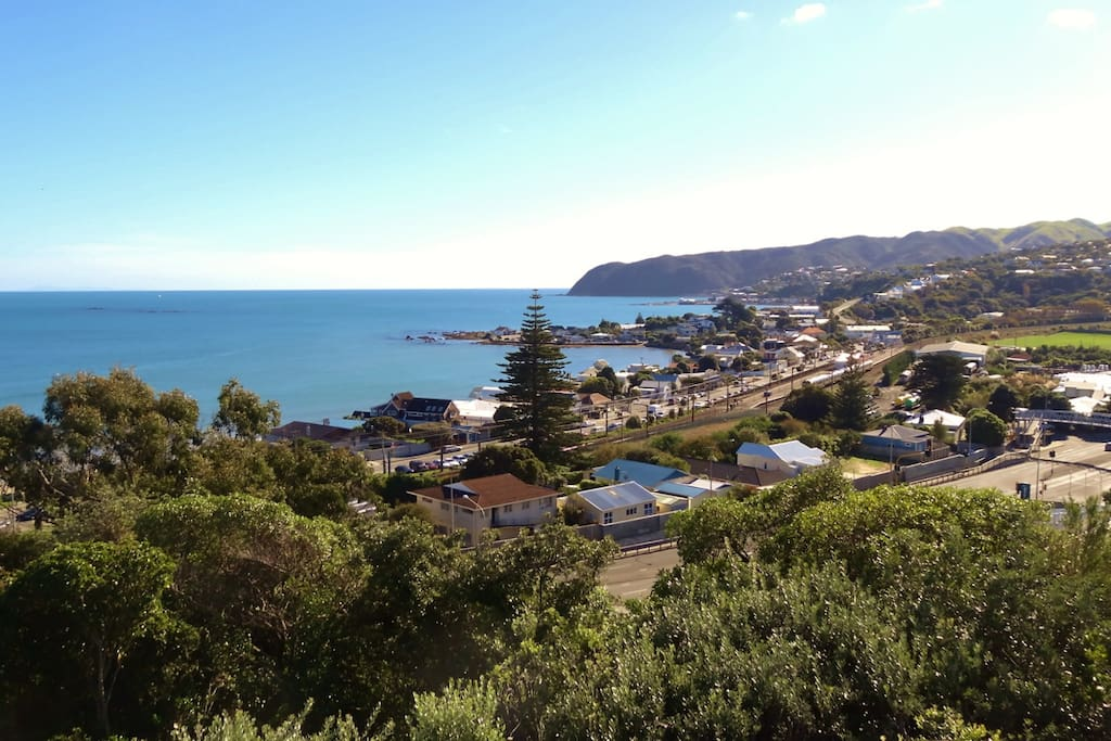 Plimmerton Village from Homestay