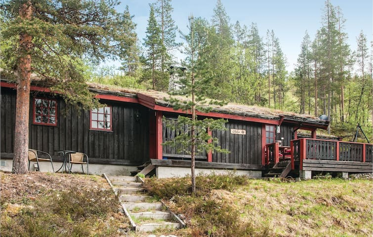 Holiday cottage with 3 bedrooms on 69m² in Rendalen