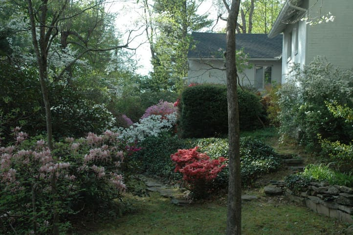 Azaleas and dogwoods blooming in spring add color to the landscaping which is heavy on ivy and rock walls and pavers.