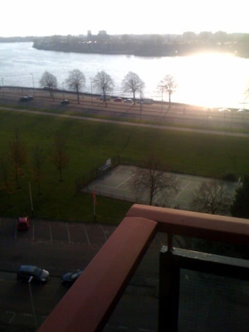 the view of the major river of rotterdam in front of you is 180 degrees
