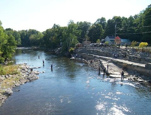 Le Loft sur la rivière Salmon