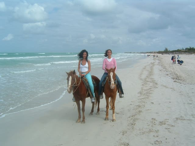 Take a horse back ride or go quad on the sands of Mehdya or wind surfing or jet skiing or ...