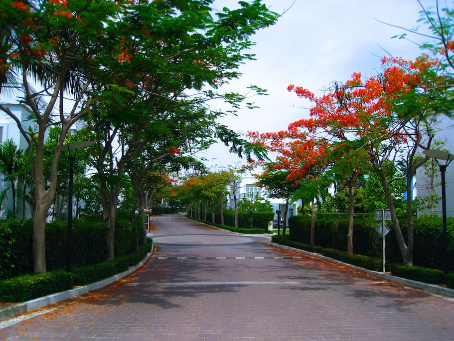 The main road to the whole compound, Villas, Sheraton Hotel and Condominium.
