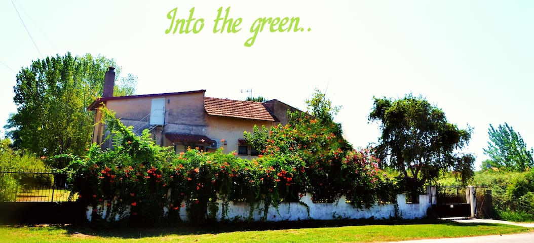 Your beach house in a garden with fruit trees