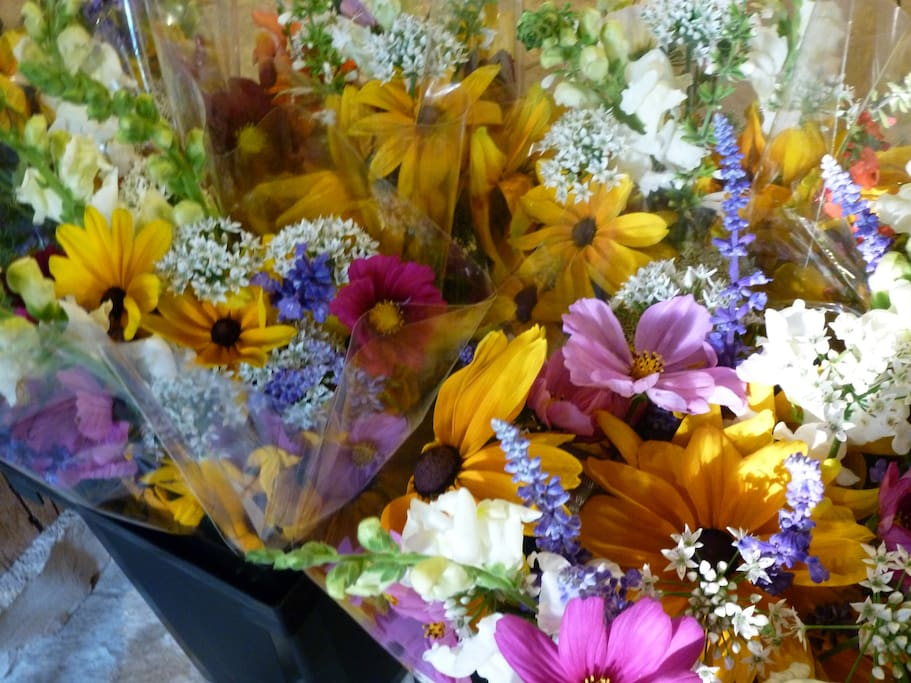 FLOWER BOUQUETS READY TO GO TO MARKET