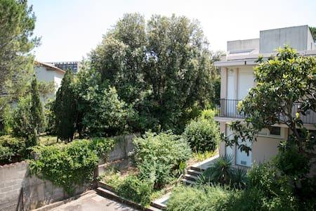 Calme et soleil à Montpellier pr 2  - Montpellier