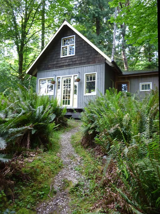 salt spring island latino personals Wave hill farm, rosalie & mark, 340 bridgeman rd, wave hill farm's 150 acres comprise the first heritage apple orchard on salt spring island, dating back to.