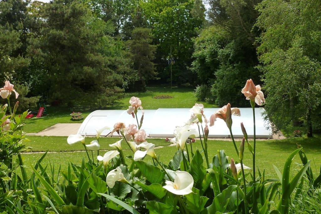 la jardin côté piscine