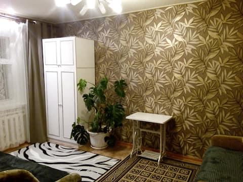 Квартира посуточно и понедельно в пгт Грибановский