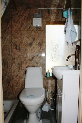 Cottage bathroom - toilet and shower