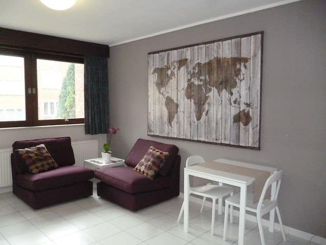 flat Breugel: Heyzel, Expo, UZ VUB