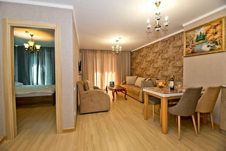 Apartments in Bakuriani Orbi Palace 731