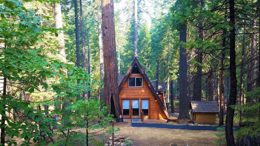 Under The Trees - Private Cabin with Hot Tub and Access to Private Pools! *