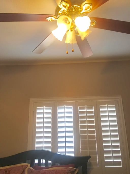Ceiling Fan and light with dimmer