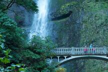 The absolutely stunning Multnomah Falls.