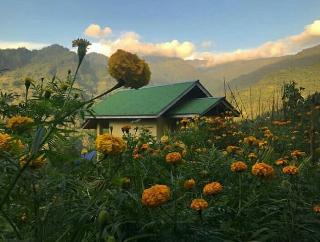 Malinggo Homestay- keep Cottage