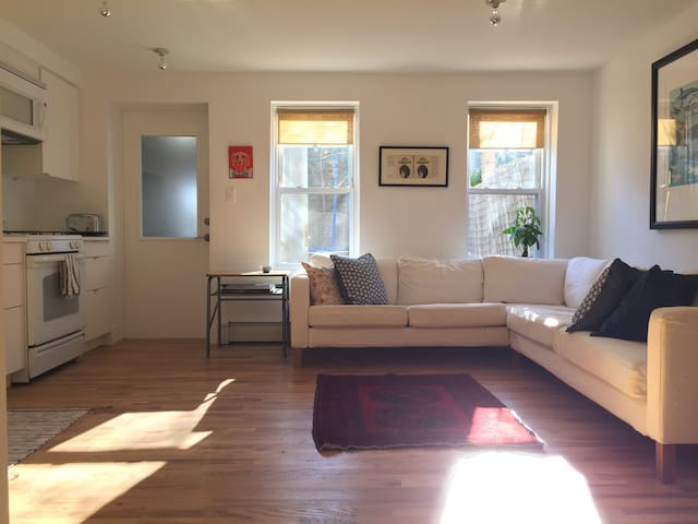 Lovely and sunny Crown Heights 1BR - Brooklyn