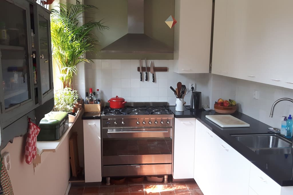 Kitchen, with professional oven