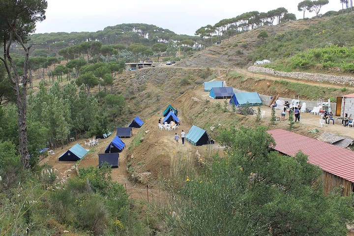 Pinea Campus - Campground in Jezzin - Haitoura - Telt