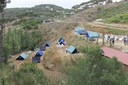 Pinea Campus - Campground in Jezzin - Haitoura - 帐篷