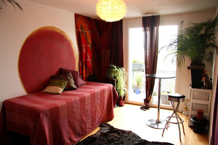 Charming room in modern apartment, close to Zurich - Dietlikon - Apartemen