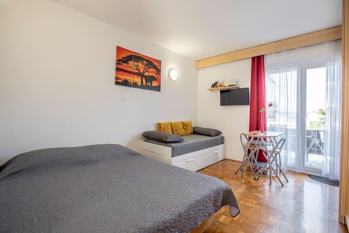 Apartma Žusterna - KOPER, SLOVENSKA OBALA